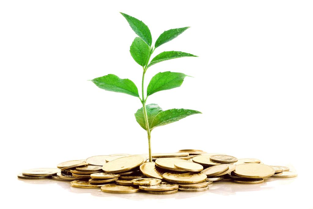 Durango Real Estate Investment